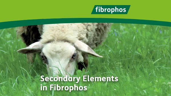 fibrophos-secondary-elements